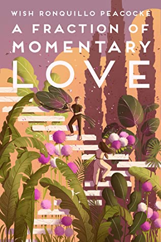 A Fraction of Momentary Love cover