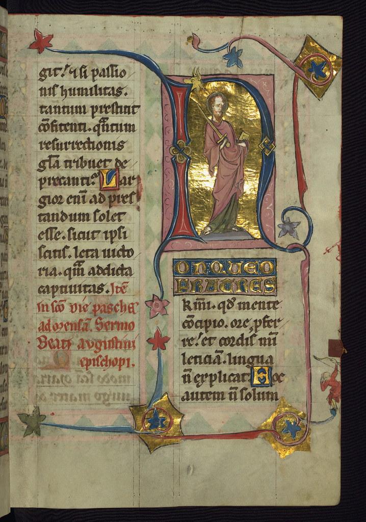 Illuminated medieval marginalia